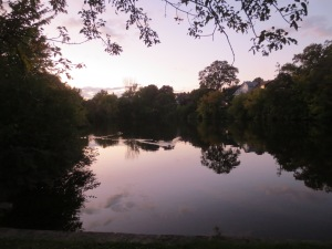 Twilight visit to the pond. The ducks are swimming over to greet us.