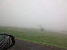 Ottawa Fog